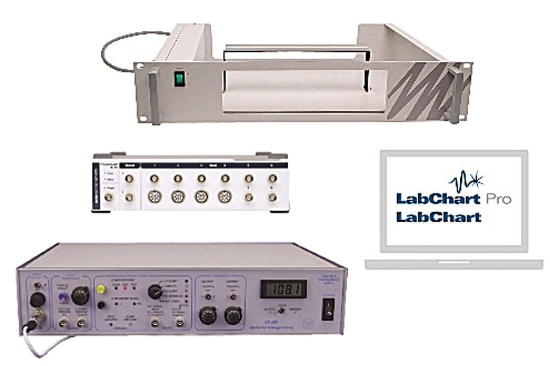 Epithelial Voltage Clamp Systems